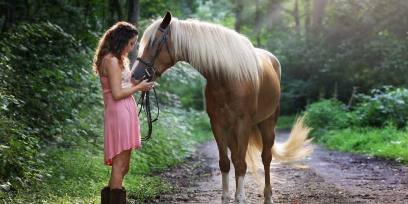8 Ways To Quickly Minimize Your Horse's Anxiety